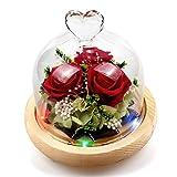 StillCool Ewige Rose, Konservierte Rose handgemachte frische Blume Rose mit schönen kreativen Herzen Design...