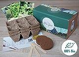Bio Geschenk Anzuchtset, Bio Tee Kräuter Pflanzset mit 3 Sorten Kräuter Samen, wie Grüne Minze, Salbei und...