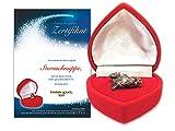 Geschenke-Bestellen24 Echte Sternschnuppe in roter Herzbox - inkl. personalisierbarem Sternschnuppenzertifikat...